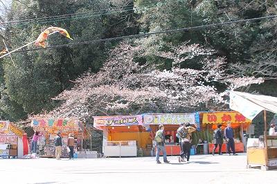 2016.3.26 桜まつり開催中です✿和歌山城tags[和歌山県]